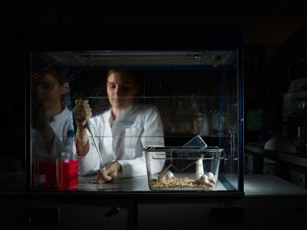 Helmholtz-Zentrum für Infektionsforschung